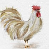 White Rooster Painting M4