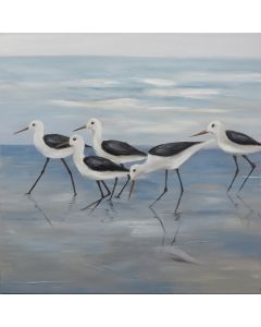 Seagulls Painting  M1 (DUE MID JULY)